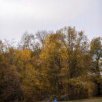 photo couple mariage en automne